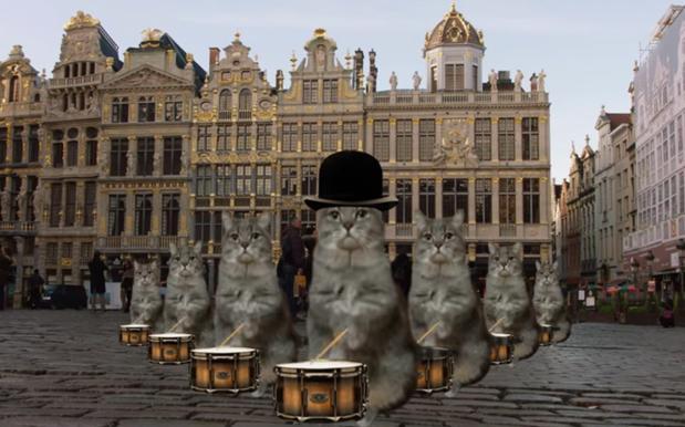 Belgium tourism pounces on brusselslockdown drops cat - Tv discount belgique ...