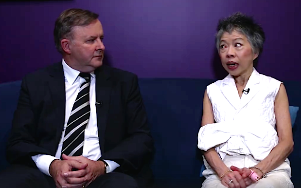 Lee Lin Chin's Prime Chinister/Logie Campaign Vid Ft. DJ Albo Is Too Much