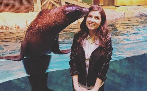 WATCH: The Bellas' Newest Acapella Member Is This 'Pitch Perfect' Sea Lion