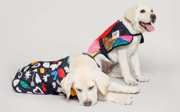 Don't Panic, But Gorman Just Released A New Range Exclusively For Doggos