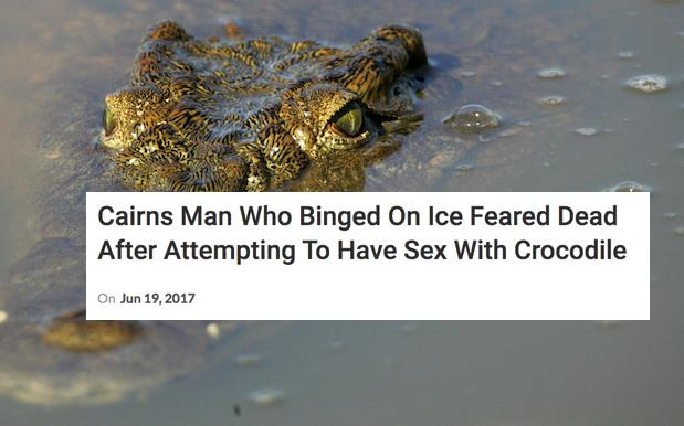 No, A Cairns Man Did Not Die Trying To Fuck A Croc While Cooked On Ice