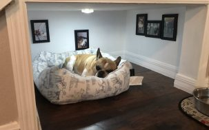 A Man Has Built An Entire Room Under The Stairs For His Best Pupper Pal