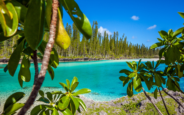 Literally Just Try Not To Drool Over These Lush New Caledonia Pics