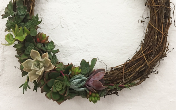 Christmas Just Got 400% More Chic Thanks To These Succulent Wreaths