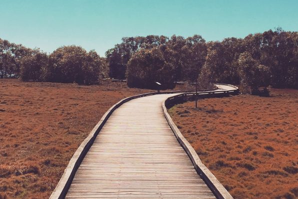 5 Walking Tracks In Brisvegas That Are Well-And-Truly Bloody Stunners