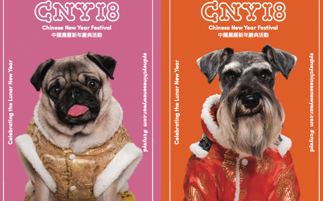 Sydney Is Celebrating Lunar New Year With Adorable Puppy Ambassadors