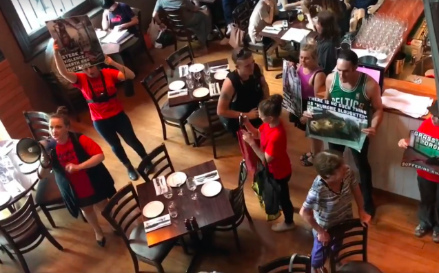 Band Of Furious Vegans Storm Melb Steakhouse On Behalf Of Cows Everywhere