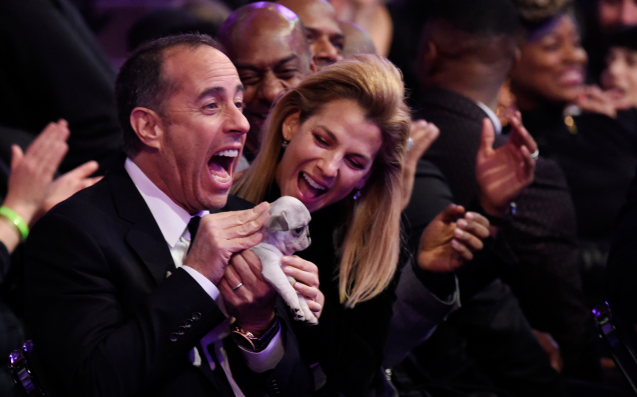 Grammy Nominees Who Didn't Nab A Gong Were Given Consolation Puppies To Hug
