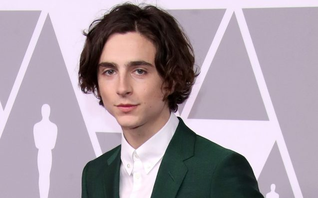 Your New Crush Timothée Chalamet Is Going To Play King Henry V On Netflix