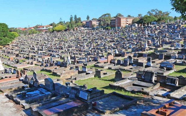 Alleged Drunk Driver Hospitalised After Ploughing Through Sydney Cemetery