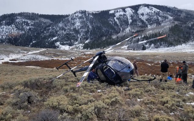 Airborne Research Helicopter Brought Down By Elk Leaping Into Tail Rotor