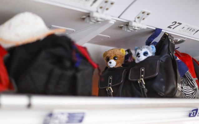Puppy Dies After Flight Attendant Insists On Stowing Him In Overhead Luggage