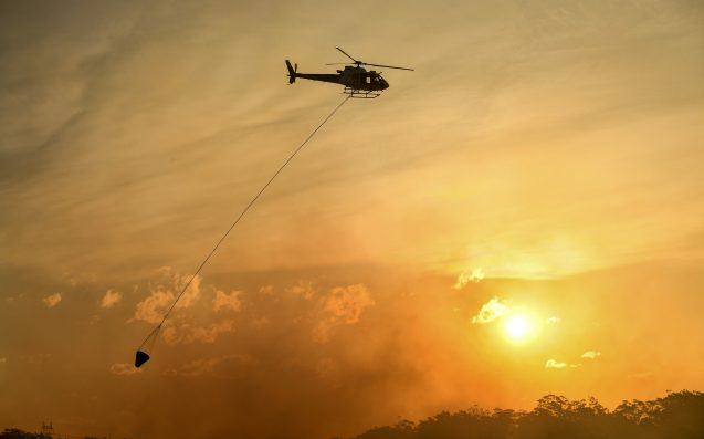 "Firefighters Warn NSW Is ""Not Out Of The Woods"" On Third Day Of Bushfires"