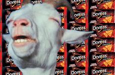 Doritos crackers