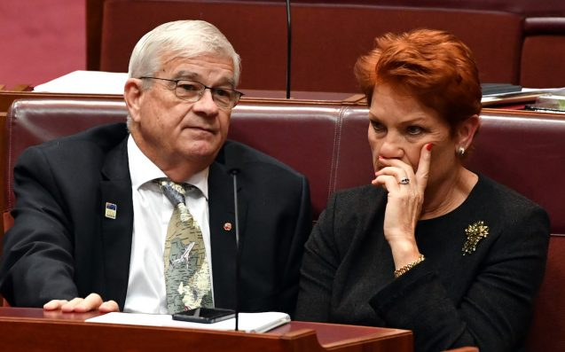 ANOTHER ONE: Brian Burston Becomes Latest One Nation Senator To Abandon Ship